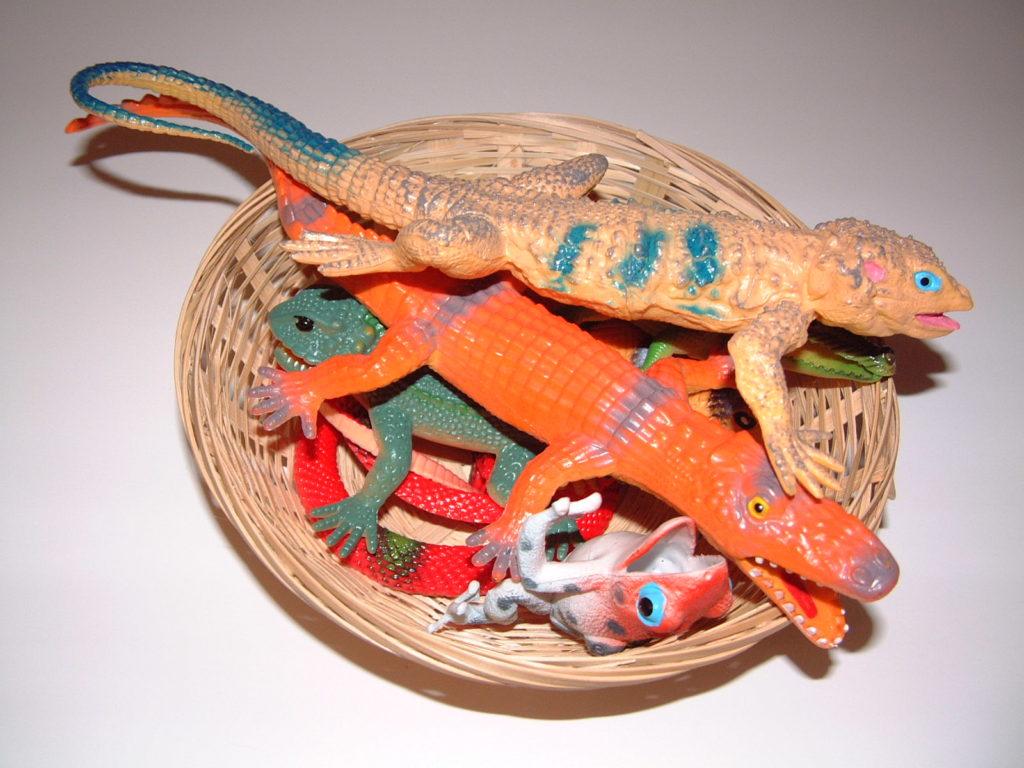 SC7 Reptiles